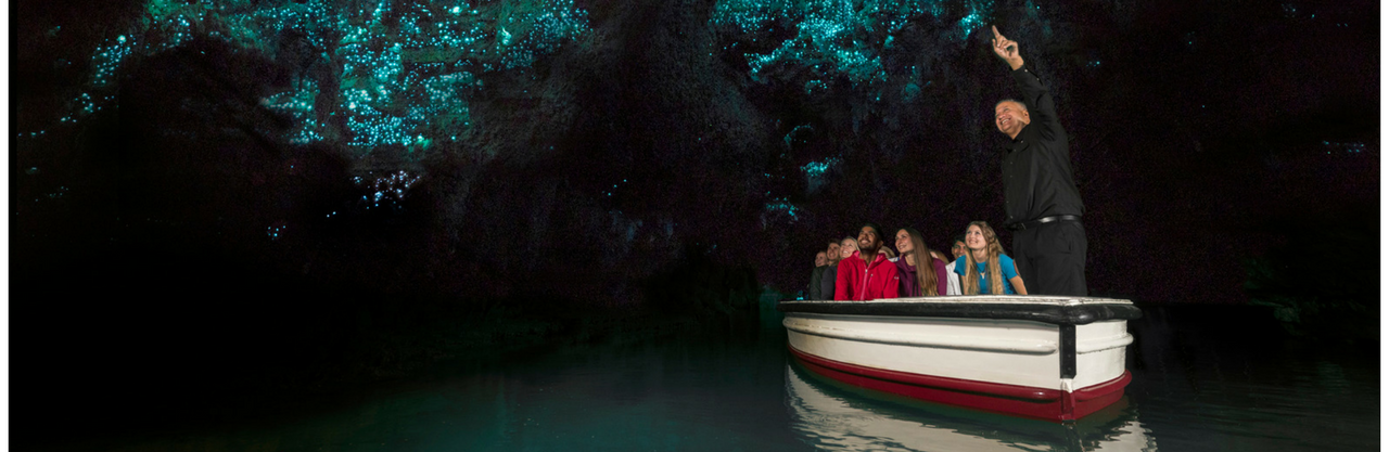 Waitomo Caves Day Tour From Auckland