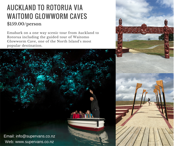 Auckland to Rotorua Via Waitomo Glowworm Caves : One of The Best Deal is On !!